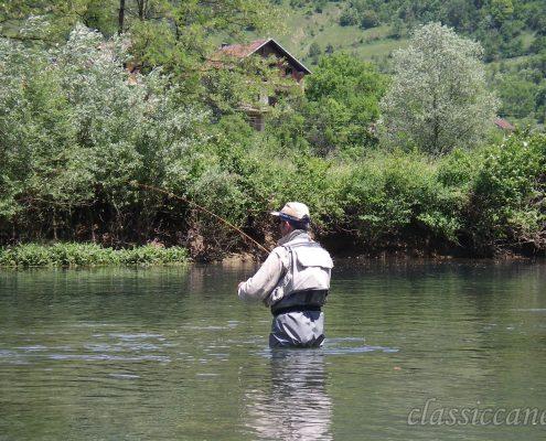 Pesca a mosca, Bornia, Sanica, Dry fly
