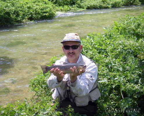 Nera river 2007